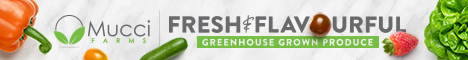 FreshFlavour60