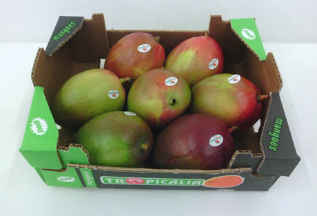 Mango market well settled