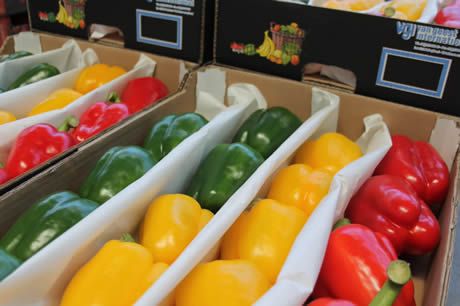 Bell pepper prices dip, more realistic picture for cucumbers