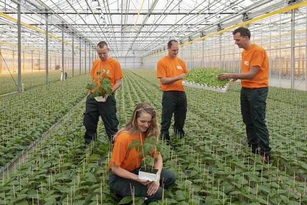 Globe Plant is 60 jaar en trakteert