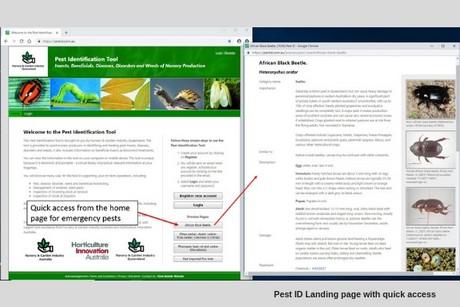 Australia: A free electronic pest identification tool