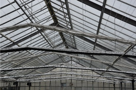 Preparing your greenhouse for the next cold spell or Polar