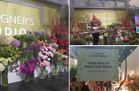Us Pa Flower Show Blooms On International Stage