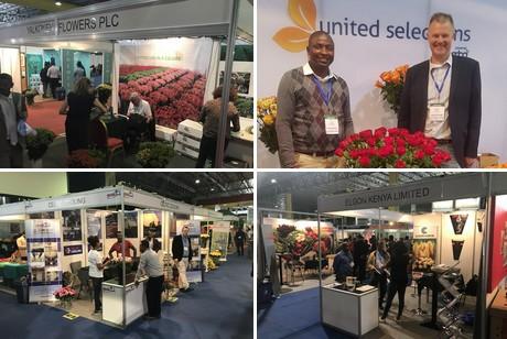 HortiFlora Ethiopia: Future of growth for Ethiopian flori- and