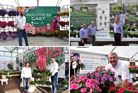 Floraldaily: global flower news