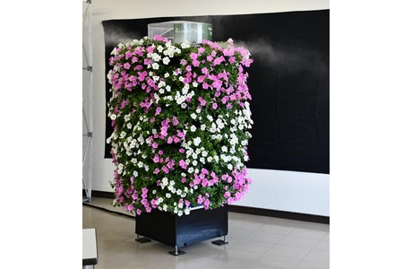 Japan: Solar-powered flower bed automatically waters plants