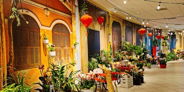 Us Oh Just Add Ice Sponsors 14th Annual Orchid Mania At