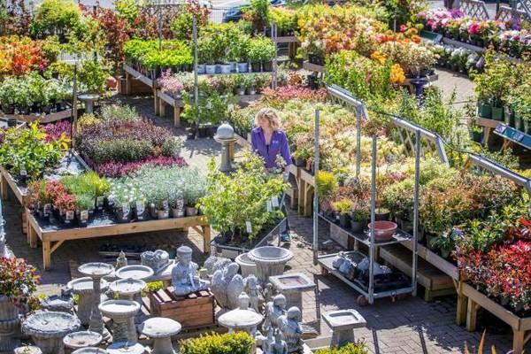 Flower Garden Centers