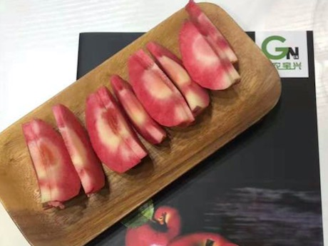 Smooth start for 2018 China International Fruit and