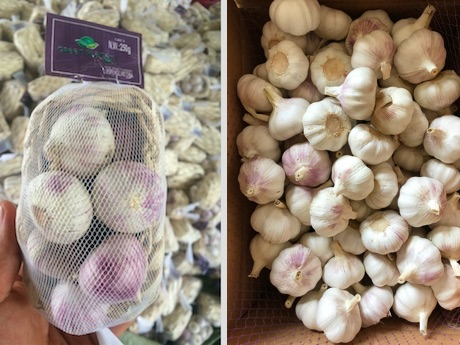 Chinese garlic still leads in global markets due to relatively low