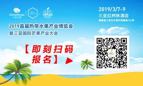 海南红毛丹价格_2019首届海南热带水果产业博览会