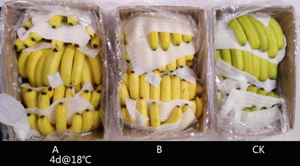banana packaging