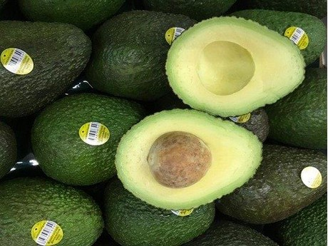 one stop shop for avocado and kiwi ripening rh freshplaza com