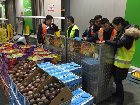 AU: Melbourne's private wholesale market tours helping to giving