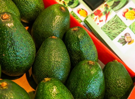 US will be out of avocados in three weeks if Trump closes