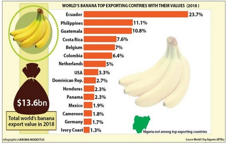 Why is Nigeria not among top banana exporting countries?