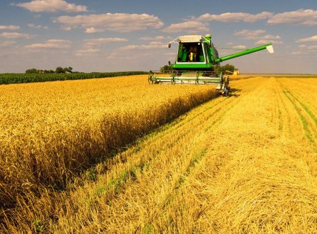 IBM launches Watson Decision Platform for Agriculture