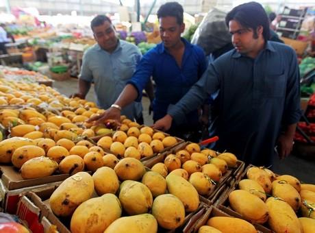 Pakistani mangoes arrive in UAE, some weeks late