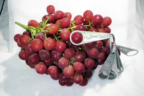 California: First grapes from the Central Valley being harvested