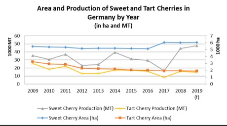 Germany: Imports of sweet cherries expected to remain high