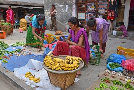 Fruit prices soar in Nepal with festivals just around the corner