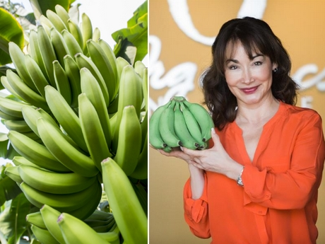 Weihnachtsbeleuchtung Basteln.Freshplaza Global Fresh Produce And Banana News