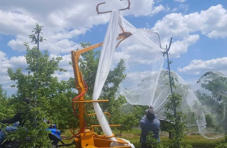 Northern Ny Apple Research Tests Hail Netting As Pest Management