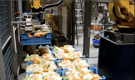ProEx Food potato tote robot in action