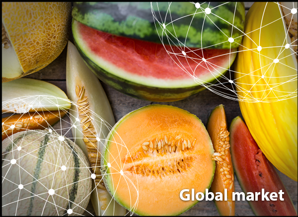 Overview Global Melon Market