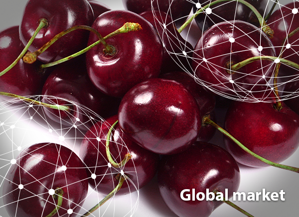 OVERVIEW GLOBAL CHERRY MARKET