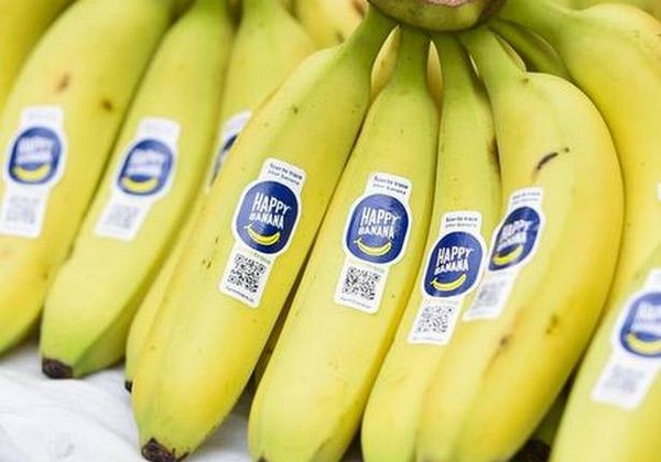 FarmTrace can track a banana's journey from farm to consumer