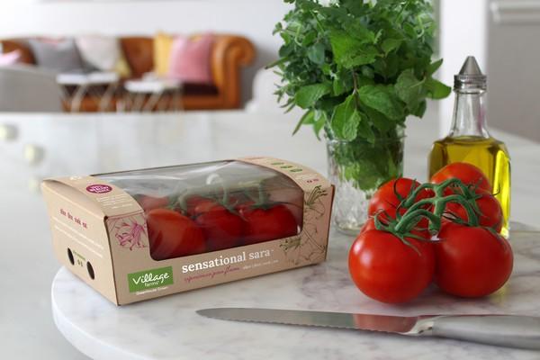 sensational sara tomato
