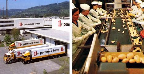 Processor potato  11er