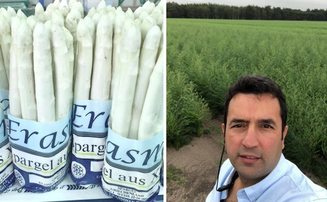 """""""Greek asparagus season somewhat delayed due to weather"""""""
