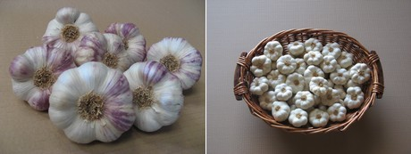 """Large retailers in partnership with French garlic producers"""""""