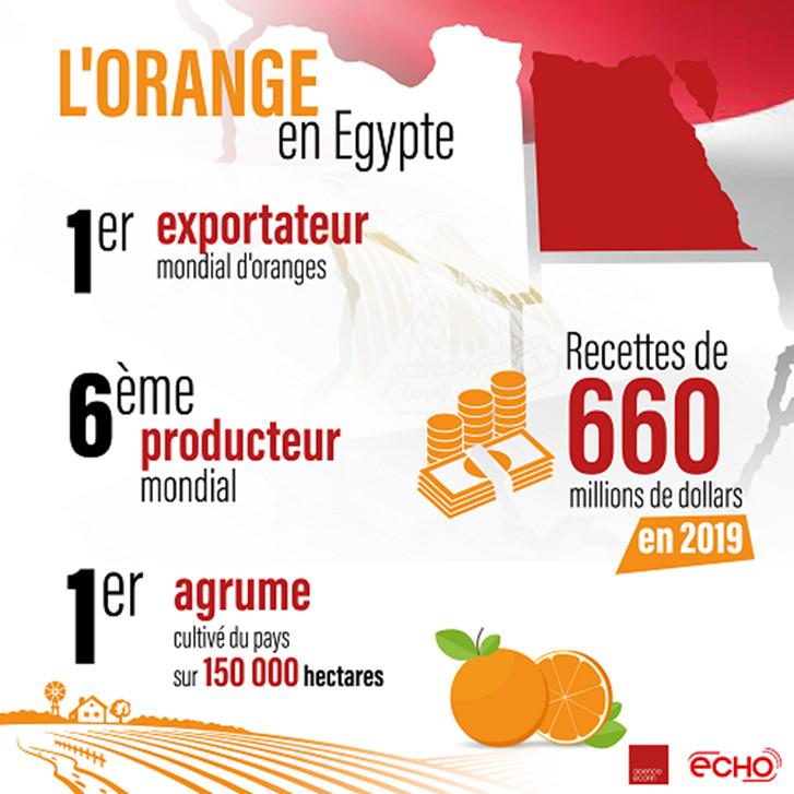 Source : Agence Ecofin
