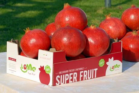 Masseria Fruttirossi: We produce 100% pomegranate juice