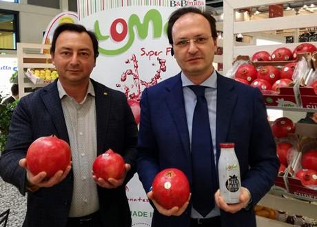 A sinistra Davide De Lisi, a destra Dario De Lisi