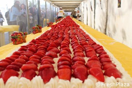 Guinness Word Record realizzata la torta di fragole piu\u0027 lunga del mondo