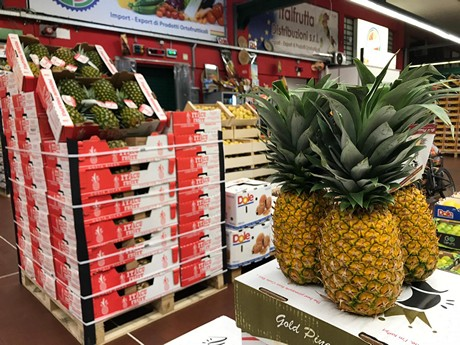 Pineapple market increasingly interesting for Europe and Italy