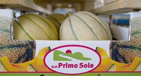 I meloni retati della Op Primo Sole per la prima volta all'estero
