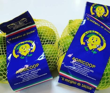 Un bilancio della campagna del Limone di Siracusa Igp biologico