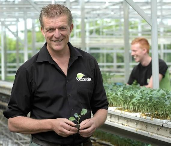Plant Nursery Gitzels Unites