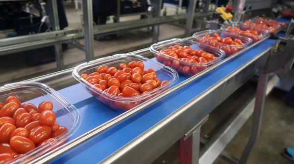 redstar packaging line