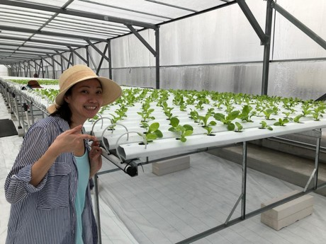 ComCrop completes 2nd rooftop farm in Singapore