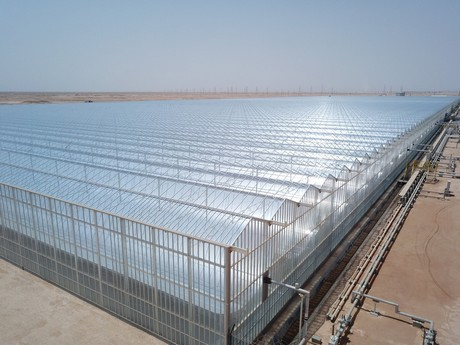Groovy Oman Solar Greenhouse In The Desert Shaping Up Home Interior And Landscaping Oversignezvosmurscom