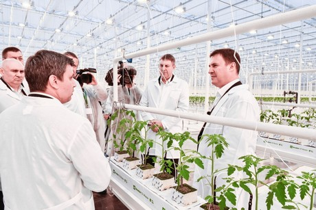 Russia Bryansk Region Ramps Up Agricultural Exports And