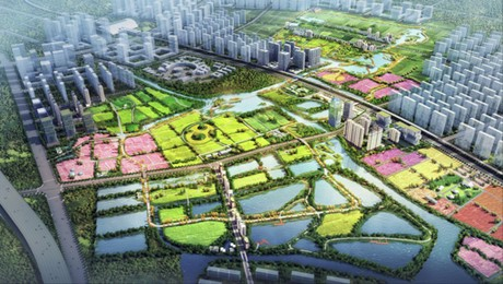 Chinese Turn Agripark Vision Into Reality