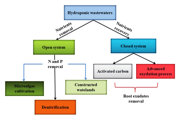 waste water in hydroponics chart